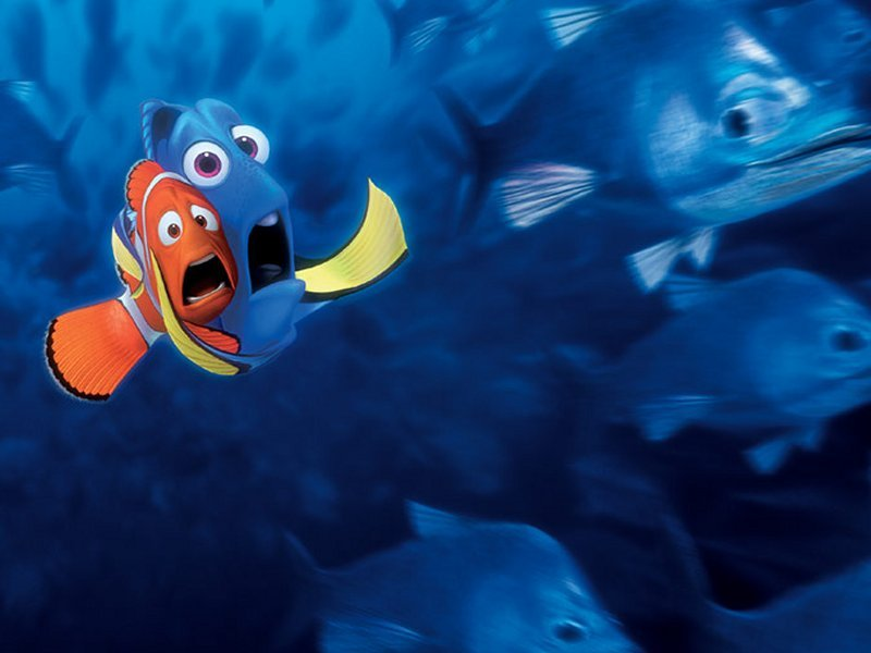 Finding Nemo Mer De Noms